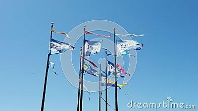 Pier 39 Flaggen in Fischer Wharf an einem windigen Sommertag stock footage