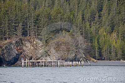 Pier and forested shoreline