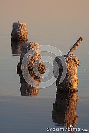 Pier Pillars Reflections