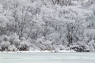 Pierce Lake Snowfall - Illinois
