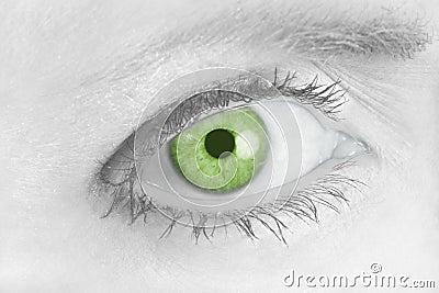 Piercing Green Eye