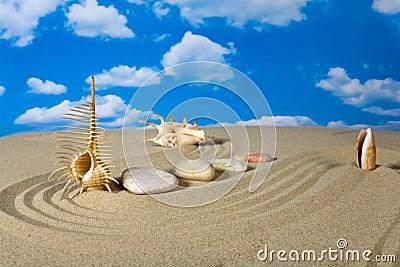 Paysage avec le coquillage et les pierres sur le ciel