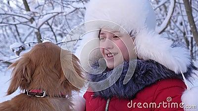 Pies całuje hostessę psie liże twarz dziewczyny Piękna dziewczyna uśmiecha się, pieszczy swojego ukochanego psa zimą w parku dzie zbiory