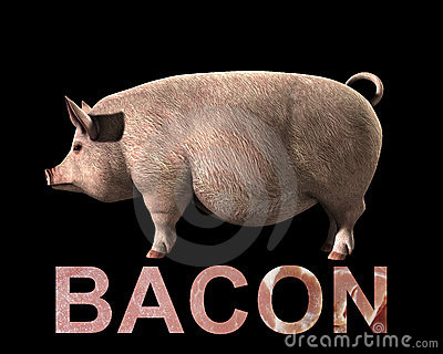Pig And Bacon