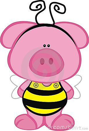 Pig in a Bee Costume