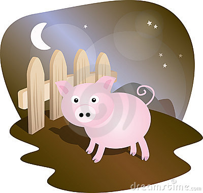 Pig with fence