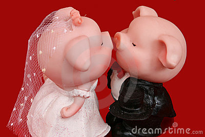 Pig Of Love