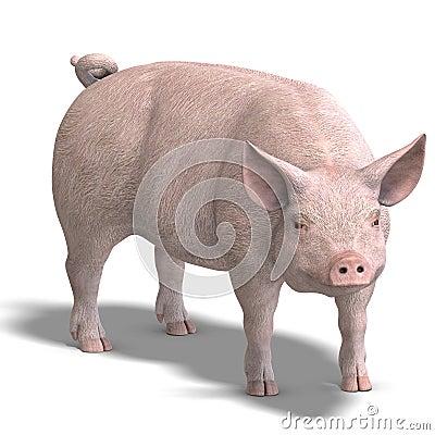 Pig render