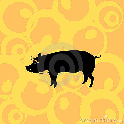 Pig on retro background