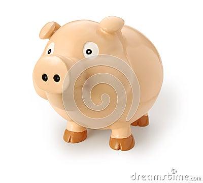 Pig Or Swine