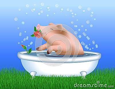 Pig Taking A Bath Royalty Free Stock Photos Image 22912428