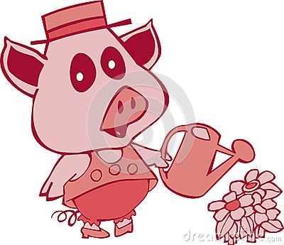 Pig with water can
