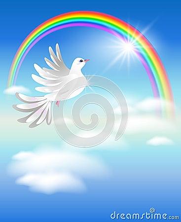 Pigeon and rainbow