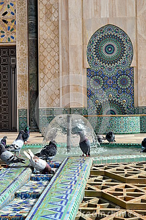 Free Pigeons Playing With Water In A Mosque S Fountain (portrait Orientation). Royalty Free Stock Image - 57112386