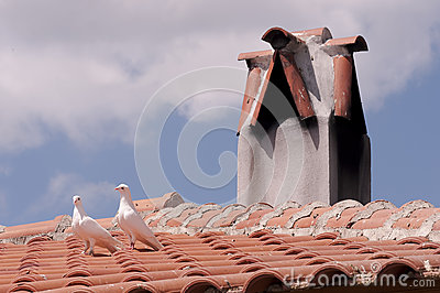 Pigeons on roof by chimney