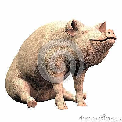 Piggie - 02