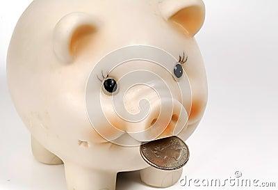 Piggy Bank 2 Stock Photo