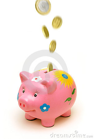 Free Piggy Bank And Money Stock Photo - 14113350