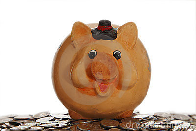Piggy bank on coins