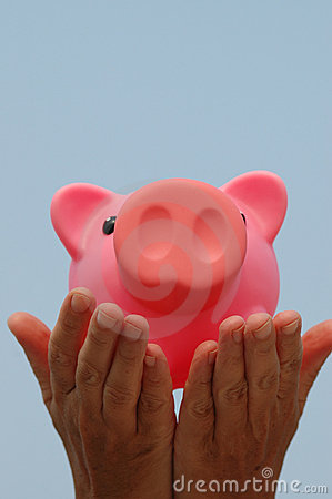 Free Piggy Bank In Hands Stock Photos - 174133