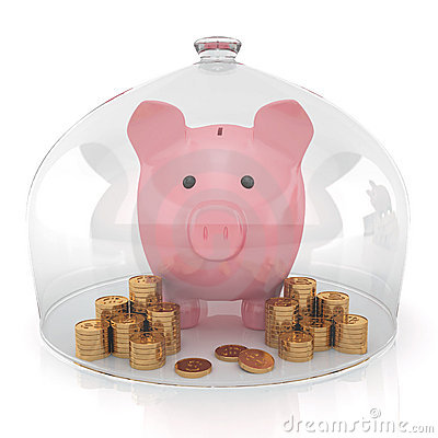 Piggy bank and money under the protection
