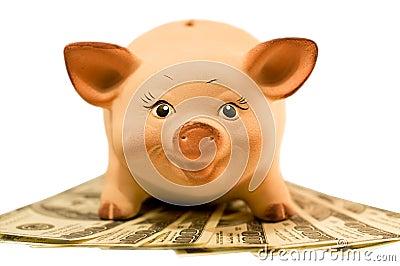 Piggy bank (moneybox)