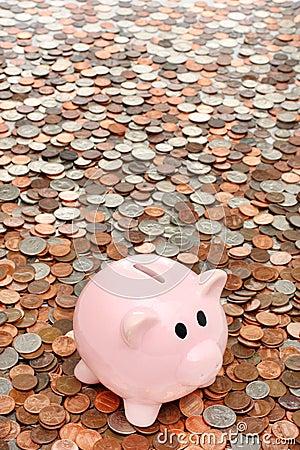Piggy bank over coins business & finance concept