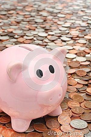 Piggy bank over money business & finance concept