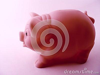 Piggy Bank Side View