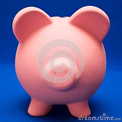 Piggy on Blue