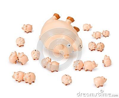 Piggybank Credit Debt Risk