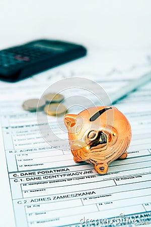 Free Piggybank On Polish Tax Form Stock Images - 33705864