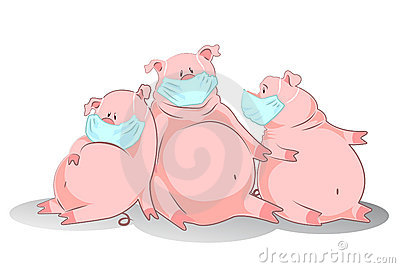 Pigs in an air mask represent swine influenza