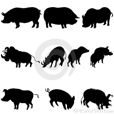 Free Pigs And Boars Silhouettes Set Stock Image - 11650171