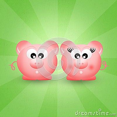 Pigs couple
