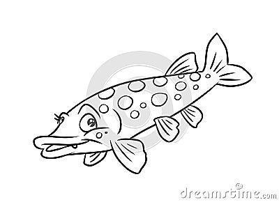 Pike Fish Illustration Coloring