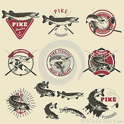 Free Pike Fishing Labels. Stock Images - 75787124
