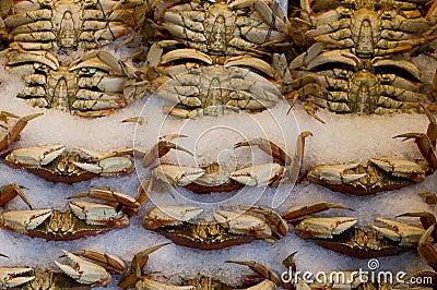Pike market crabs