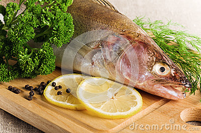 Pike perch on a kitchen board