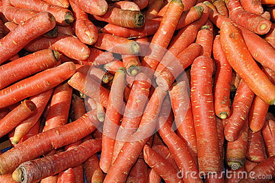 Pile of Carrots