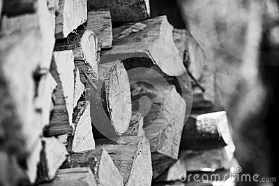 Pile of chopped logs (B/W)