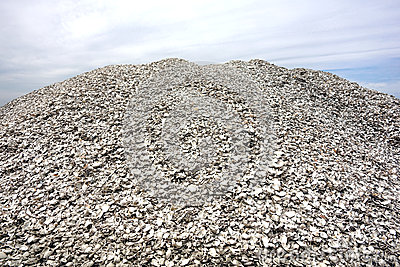 Pile Of Crushed Oyster Shells And Clam Clamshells Stock