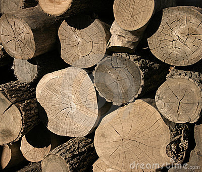Pile en bois