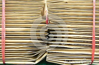 Pile envelop