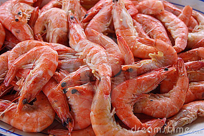 Pile of Fresh Shrimp