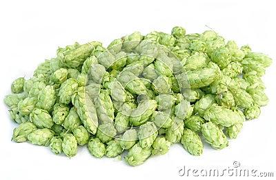 Pile of hops