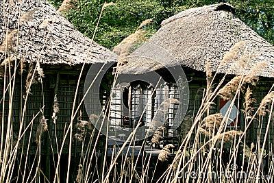 Pile-houses of Benin