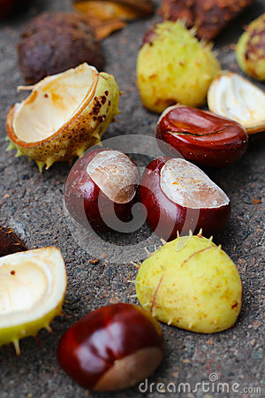 Free Pile Of Chestnuts Stock Image - 33802141