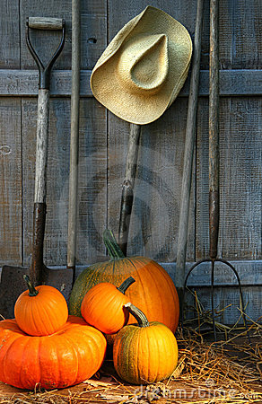 Free Pile Of Pumpkins With Tools Stock Photography - 11088922