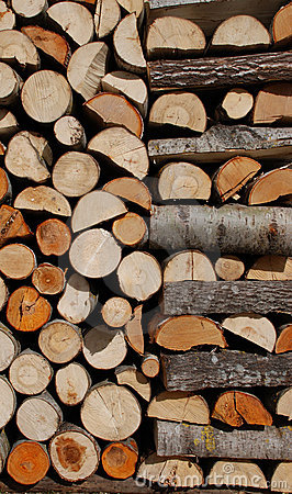 Free Pile Of Wood Royalty Free Stock Image - 14131276